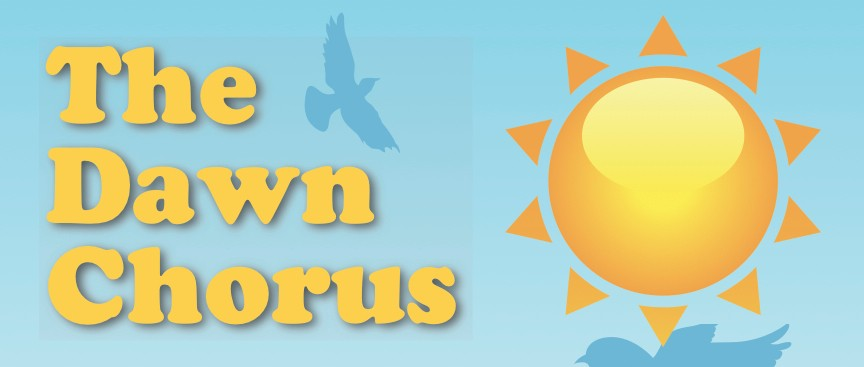 Sing With The Dawn Chorus